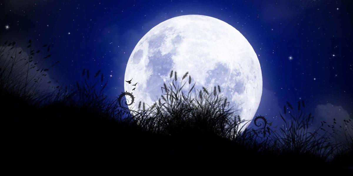 le biberon de la nuit, un moment magique !