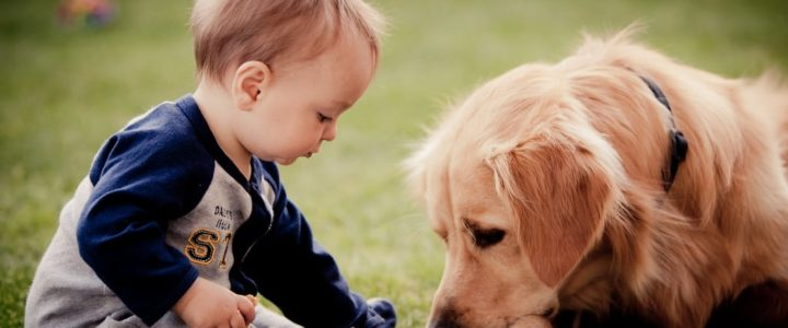 bébé en balade à l'animalerie