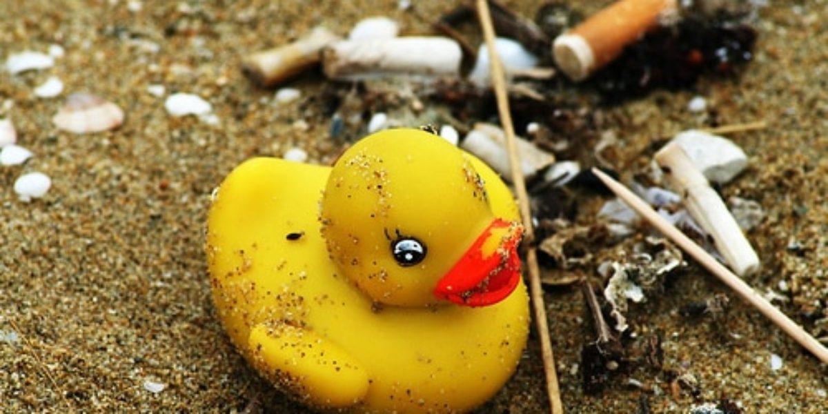 l'environnement pour les enfants avec caillou, planète écolo
