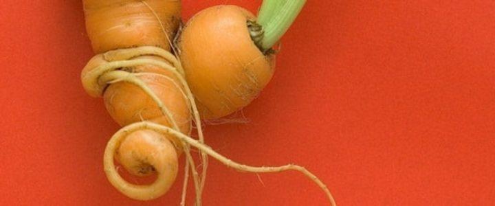 la carotte te les enfants