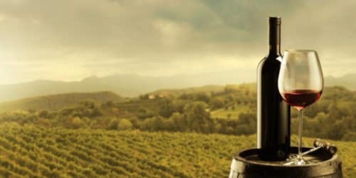 My Vitibox, la box des amateurs de vin