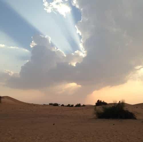 vacances en famille a dubai découverte du desert