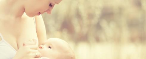conseils allaitement