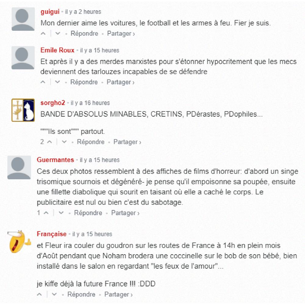 commentaires-fdesouche