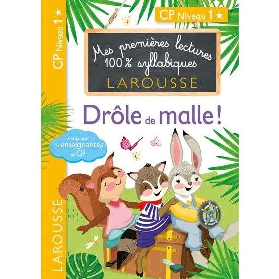 livres-pour-apprendre-a-lire-a-nos-enfants-Premieres-lectures-Larousse-100-syllabiques