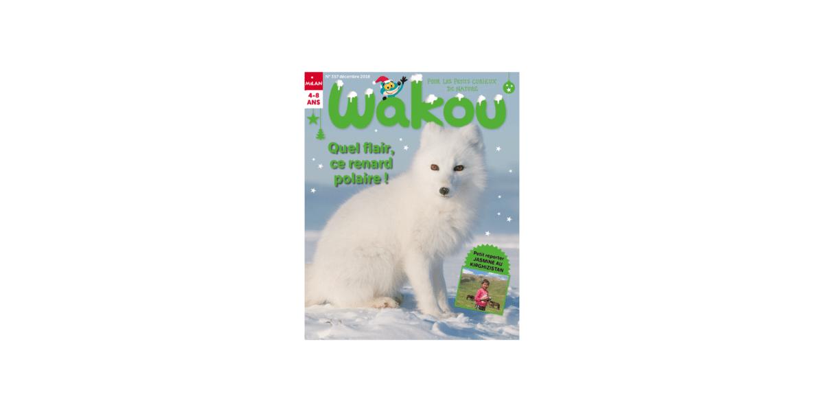 magazine-bebe-wakou